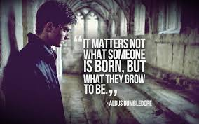 hd wallpaper background image id 330781 1920x1200 harry potter