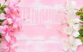 photo wallpaper flowers background pink wood pink flowers