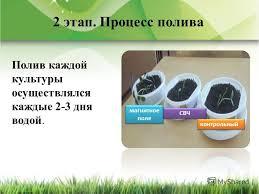 Презентация на тему Изучение влияния электрического и магнитного  Процесс полива Полив каждой культуры осуществлялся каждые 2 3 дня водой 7 магнитное поле контрольный СВЧ