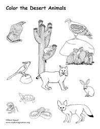 Small Picture Desert Animals Coloring Pages Bighorn Sheep inside Wildlife