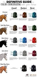 Pin By Mahala Mcnabb On Tack Horses Horse Fashion Horse