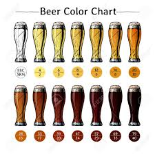 Vector Hand Drawn Illustration Of Beer Color Chart Infographic