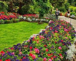 Small Picture Flower Garden Design Pictures Native Garden Design Flower Bed