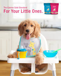Fromm Puppy Feeding Chart Large Breed Puppy Gold Dog Food Fromm Family Foods