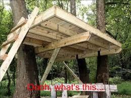 simple tree platforms. Modren Simple Building A Treehouse With Simple Tree Platforms