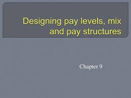 Designing Pay Levels Mix And Pay Structures Designing Pay Levels Mix And Pay Structures Ppt Download