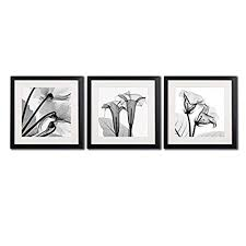 framed poppy wall art decor transparent flowers canvas print artworks for home decorations a set of black and white blossom printed posters painting  on bathroom wall art black and white with black and white bathroom wall art prints amazon