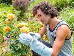 The best <b>gardening</b> glove you can buy in 2019 - Business Insider