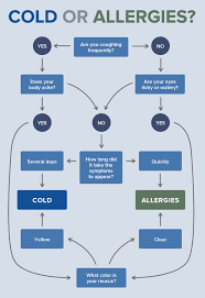Cold Vs Allergy Symptoms Chart Isotonix Opc 3 Cold Or Allergies Health Health Remedies