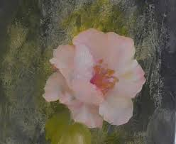 the beauty of oil painting mini delights you shows episode 1 poppy you
