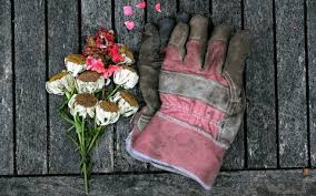 best gardening gloves. Gardening Gloves Best