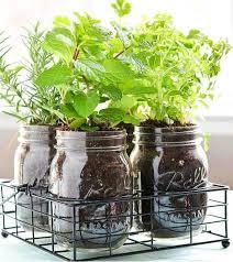 Mason Jar DIY Herb Garden   Fun and Easy Indoor Herb Garden Ideas