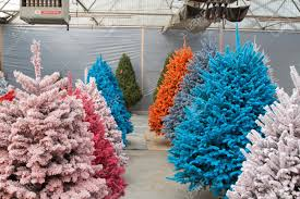 Shot of colored Christmas trees, flocked in different colors Stock Photo -  17405894