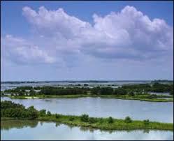 Tide Chart For Cedar Key Florida Cedar Keys Fl Weather Tide Charts Fishing Kayaking