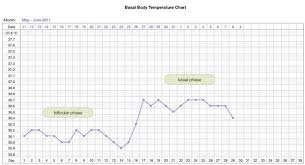Temperature Chart Ovulation What Does The Doctor Say