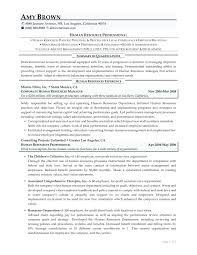 Professional Resume Templates Free Download template It Professional Resume Template 44