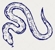 эскизы змей эскиз змея стоковое фото Kreativ 12068147