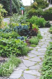 Small Picture 9 best EDIBLE LANDSCAPE Design by Seattle Urban Farm Co images