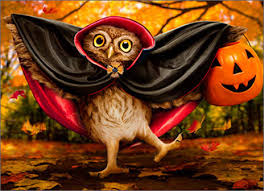 Image result for halloween owl