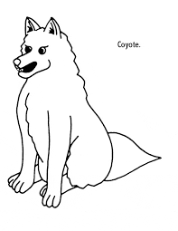 Small Picture Coyote coloring page Animals Town Animal color sheets Coyote