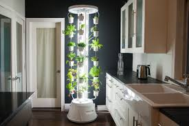Vertical Herb Garden In Your Kitchen 15 Creative And Efficient Solutions For A Thriving Indoor Vertical