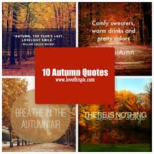 Autumn Quotes Impressive 48 Autumn Quotes