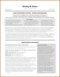 Executive Summary Resume Sop Proposal