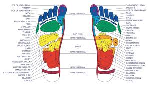 Foot Pressure Points Chart Foot Pressure Points 15 Reflexology Pressure Points To