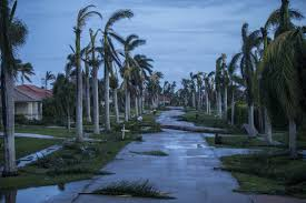 Photos from Marco Island after Hurricane Irma - South Florida Sun ...