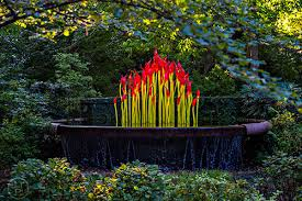 chihuly in the garden capture life