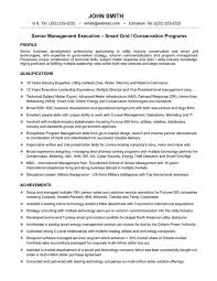 senior executive resume 48 best best executive resume templates samples images on