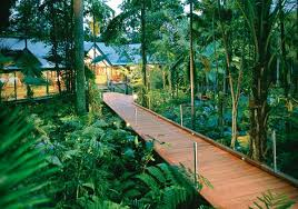 Best Treehouse Hotels In The World  ThrillistTreehouse Accommodation