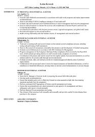Internal Auditor Resume Sample Staff Free Samples Audit Format