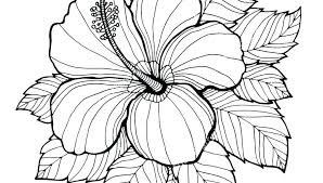 Pictures Of Coloring Pages Of Flowers Free Printable Coloring Book