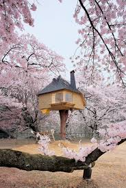 Exotic Tree Houses 17 Of The Most Amazing Treehouses From Around The World Bored Panda