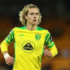 Arsenal fans urge Edu to sign Norwich ...