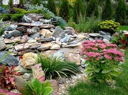 Creative of Rock Garden Design And Construction Succulent Rock Garden 20 Rock  Garden Ideas That Will Put Your