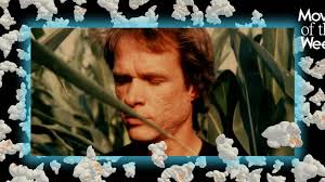 <b>Wild</b> Combination <b>Mirrors</b> the Dreaminess of Arthur Russell's Music ...