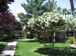 The Bascom Group Acquires 252Unit Luxury Apartment Community In Luxury Apartments Las Vegas Nv