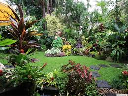 Small Picture Tropical Garden Design Ideas Australia Sixprit Decorps