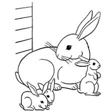Small Picture Top 15 Free Printable Bunny Coloring Pages Online
