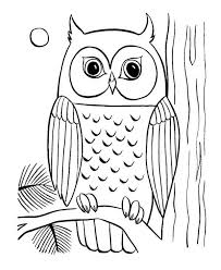 owl coloring pictures.  Coloring Coloring Pages Of Owls To Print   Owl Coloring Page 29 For You  Downloadprint And Color Have Fun In Pictures