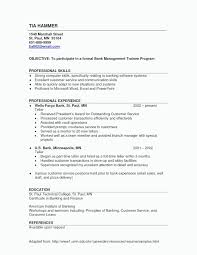 College Resume Templates Word Best College Resume Examples Apa