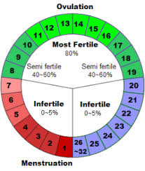 Menstrual Cycle Chart Natural Birth Control Menstrual