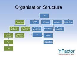 Citibank Organizational Chart College Paper Sample