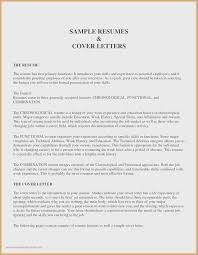 Resumes Free Download Traditional 2 Resume Template Free Download Resume