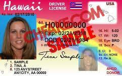 Buy Hawaii Id Identification Fake Scannable