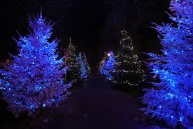 christmas lighting decoration. Tree Branch Light Night Christmas Fir Lighting Decor Illuminated Advent Decoration Lights Spruce