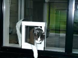 sliding glass doggy door sliding glass dog door insert cat for doors also electronic sliding glass sliding glass doggy door freedom aluminum patio panel