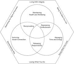 Venn Diagram Techniques Within Role Hexagon And Between Role Venn Diagram